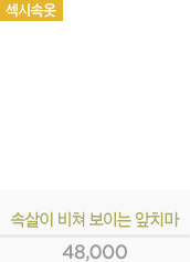 [일본 직수입] 속살이 비쳐 보이는 비닐 앞치마(すけすけビニ?ルエプロン) - 니포리기프트(5A0054CL) (WCK)